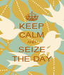 KEEP CALM AND SEIZE THE DAY - Personalised Poster A4 size
