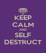 KEEP CALM AND SELF DESTRUCT - Personalised Poster A4 size