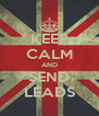 KEEP CALM AND SEND LEADS - Personalised Poster A4 size