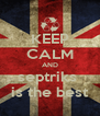 KEEP CALM AND septriks  is the best - Personalised Poster A4 size