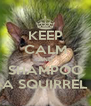 KEEP CALM AND SHAMPOO A SQUIRREL - Personalised Poster A4 size