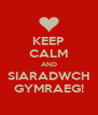 KEEP CALM AND SIARADWCH GYMRAEG! - Personalised Poster A4 size