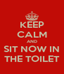 KEEP CALM AND SIT NOW IN THE TOILET - Personalised Poster A4 size