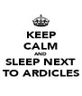 KEEP CALM AND SLEEP NEXT TO ARDICLES - Personalised Poster A4 size