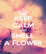 KEEP CALM AND SMELL A FLOWER - Personalised Poster A4 size