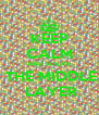 KEEP CALM AND SOLVE  THE MIDDLE  LAYER - Personalised Poster A4 size