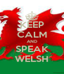 KEEP CALM AND SPEAK WELSH - Personalised Poster A4 size