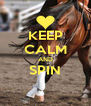 KEEP CALM AND SPIN  - Personalised Poster A4 size