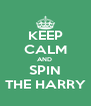 KEEP CALM AND  SPIN THE HARRY - Personalised Poster A4 size