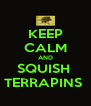 KEEP CALM AND SQUISH  TERRAPINS  - Personalised Poster A4 size