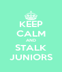 KEEP CALM AND STALK JUNIORS - Personalised Poster A4 size