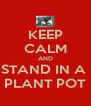 KEEP CALM AND STAND IN A  PLANT POT - Personalised Poster A4 size