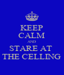 KEEP CALM AND STARE AT  THE CELLING - Personalised Poster A4 size