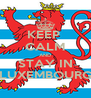 KEEP  CALM AND STAY IN LUXEMBOURG - Personalised Poster A4 size