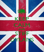 KEEP CALM AND STIFF DYLANS - Personalised Poster A4 size