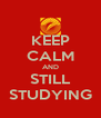 KEEP CALM AND STILL STUDYING - Personalised Poster A4 size