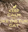 KEEP CALM AND STOKE THE FURRY CAT - Personalised Poster A4 size