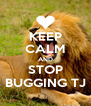 KEEP CALM AND STOP BUGGING TJ - Personalised Poster A4 size