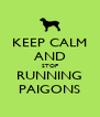 KEEP CALM AND STOP RUNNING PAIGONS - Personalised Poster A4 size