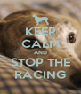 KEEP CALM AND STOP THE RACING - Personalised Poster A4 size