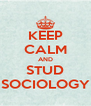 KEEP CALM AND STUD SOCIOLOGY - Personalised Poster A4 size
