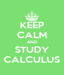 KEEP CALM AND STUDY CALCULUS - Personalised Poster A4 size