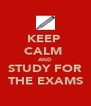KEEP  CALM  AND STUDY FOR THE EXAMS - Personalised Poster A4 size