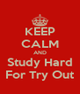 KEEP CALM AND Study Hard For Try Out - Personalised Poster A4 size
