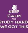 KEEP CALM AND STUDY HARD; WE GOT THIS - Personalised Poster A4 size