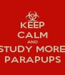 KEEP CALM AND STUDY MORE, PARAPUPS - Personalised Poster A4 size