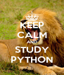 KEEP CALM AND STUDY PYTHON - Personalised Poster A4 size