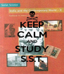 KEEP CALM AND STUDY S.S.T. - Personalised Poster A4 size