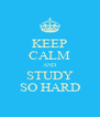 KEEP CALM AND STUDY SO HARD - Personalised Poster A4 size