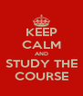 KEEP CALM AND STUDY THE COURSE - Personalised Poster A4 size