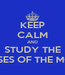 KEEP CALM AND STUDY THE PHASES OF THE MOON - Personalised Poster A4 size