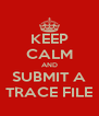 KEEP CALM AND SUBMIT A TRACE FILE - Personalised Poster A4 size