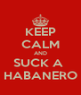 KEEP CALM AND SUCK A  HABANERO - Personalised Poster A4 size