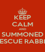 KEEP CALM AND SUMMONED RESCUE RABBIT - Personalised Poster A4 size