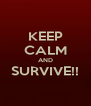 KEEP CALM AND SURVIVE!!  - Personalised Poster A4 size