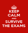 KEEP CALM AND SURVIVE THE EXAMS - Personalised Poster A4 size