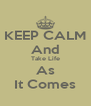 KEEP CALM And Take Life As It Comes - Personalised Poster A4 size