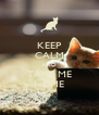 KEEP CALM AND TAKE ME HOME - Personalised Poster A4 size
