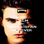 KEEP CALM AND TEAM STEFAN FOREVER - Personalised Poster A4 size