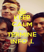 KEEP CALM AND TERMINE INFO .l. - Personalised Poster A4 size