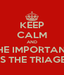 KEEP CALM AND THE IMPORTANT IS THE TRIAGE - Personalised Poster A4 size