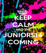 KEEP CALM  AND THE JUNIORS14 COMING - Personalised Poster A4 size