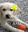 KEEP CALM AND THROW MY BALL - Personalised Poster A4 size