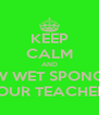 KEEP CALM AND THROW WET SPONGES AT YOUR TEACHERS - Personalised Poster A4 size