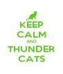 KEEP CALM AND THUNDER CATS - Personalised Poster A4 size