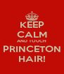 KEEP CALM AND TOUCH PRINCETON HAIR! - Personalised Poster A4 size